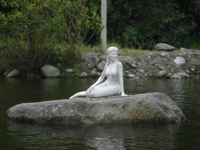 Rio Verde Mermaid